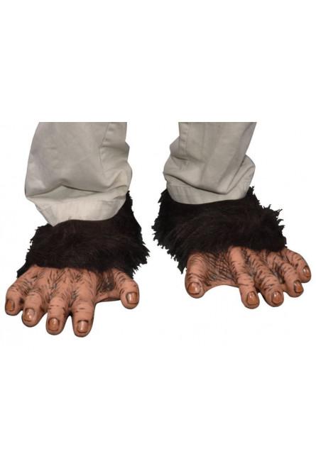 Лапы шимпанзе