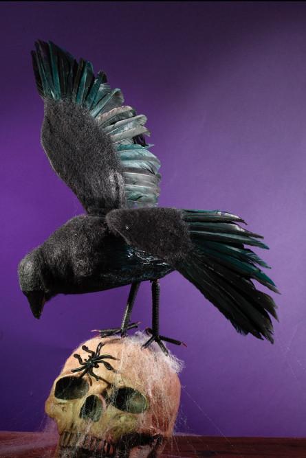 Декоративный черный ворон