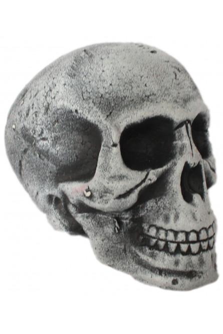 Серый череп