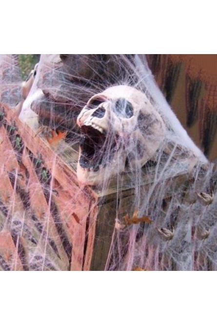 Паутина с тремя пауками