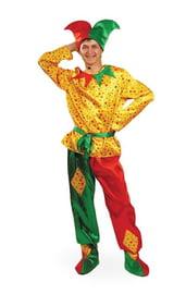 Взрослый костюм Петрушки
