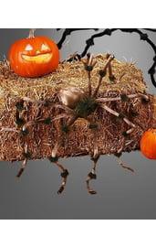 Коричневый плюшевый паук 120 см