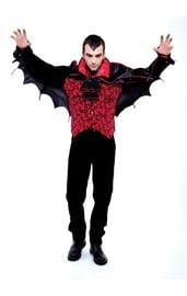 Мужской костюм летучей мыши