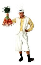 Мужской костюм Зайца