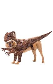 Костюм для собаки Большой ящер