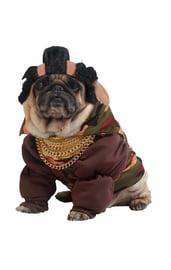 Костюм для собаки Пит Буль