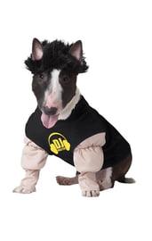 Костюм для собаки DJ мастер