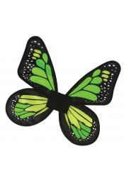 Атласные крылья Бабочка зеленые