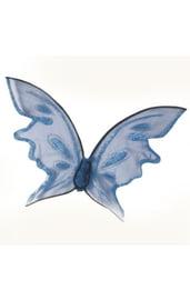 Яркие голубые крылья бабочки