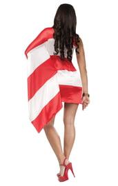 Костюм Флаг Пуэрто-Рико