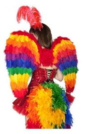 Радужные крылья