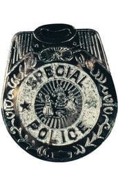 Большой полицейский значок