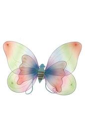Двойные радужные крылья бабочки