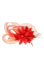 Разборный красный ободок Эхинацея