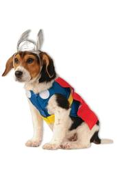 Костюм для собаки Тор