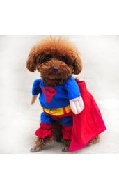 Костюм для собак Супермен