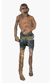 Декорация латексная мумия