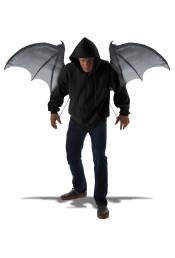 Крылья демона черные