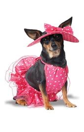 Костюм для собак Стильная дамочка