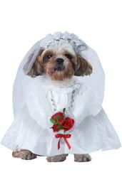 Костюм для собак Невеста