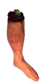 Пара оторванных ног