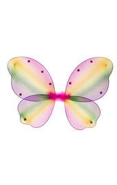 Цветные крылья Бабочка
