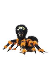 Костюм паука для собаки