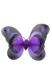 Фиолетовые крылья