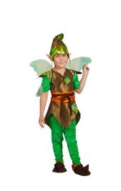 Детский костюм Эльфа Мальчика
