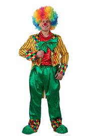 Костюм клоуна в разноцветном парике