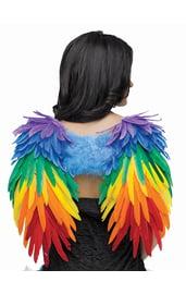 Взрослые радужные крылья