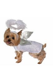 Костюм ангела для собаки