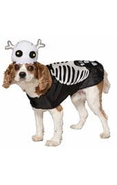 Костюм скелета для собаки
