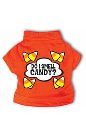 Оранжевая футболка для собаки