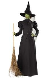 Костюм ведьмы Бастинды