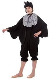 Взрослый костюм Вороны