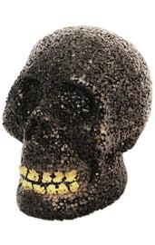 Череп с зубами