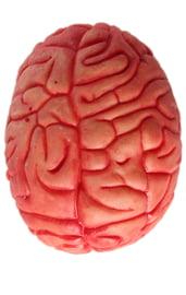 Резиновый мозг