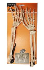 Руки скелета