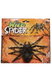 Черный тарантул