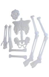 Набор из частей скелета