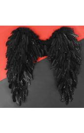 Ангельские черные крылья