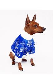 Костюм Морозика для собак