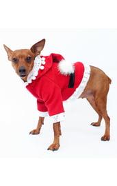 Костюм Санты для собак