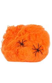 Оранжевая паутина с двумя пауками
